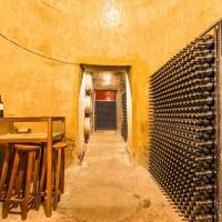 vinos del condado - Bodegas Oliveros
